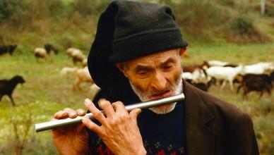 Unhais da Serra, 1991